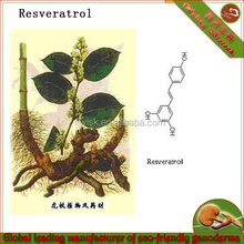 Plant extraction-giant knotweed extract