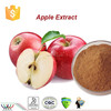 free sample anti-oxidant apple polyphenol,KOSHER apple bark extract 95% phloridzin,HACCP factory supply apple extract