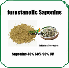 Professional Supplier Tribulus Terrestris Extract Furostanolic Saponins