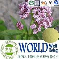 Hot sale Valerian root extract/Valerianic Acid 0.7%/Valerian extract/Muscle relaxant plant extract