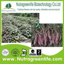 Herb Extract Purple Sweet Potato P.E.