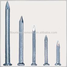 galvanized concrete nails/ common wire nail china supplier