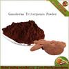 100% Organic Juncao Mushroom Triterpenes >4%