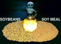 Refined Soybean Oil in flexitanks