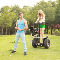 2014 CHIC- GOLF golf cart frame for sale