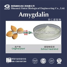 98% amygdalin bitter apricot seed extract