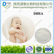 factory supply best price DHEA/Dehydroepiandrosterone Powder 99% cas no 53-43-0