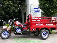 Canton Fair cargo bike/bicycle with motor/3 wheel motorcycle