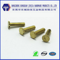 M5x15 High quality Decorative knurled head brass fastening screws