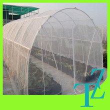 anti insect net house for vegetables and crops
