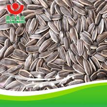 Sunflower seeds 250pcs/50g