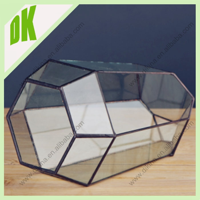 Dinika Whole Hanging Large Glass Terrarium With A Hinged Door