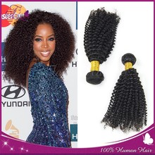 Cut from one single donor Kinky Curly Virgin Human Hair Extenions High quality 100% Malaysian kinky curly remy hair weave