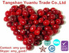 Quality Controled Frozen Cranberry 2.5kg*4 Packing For Sale