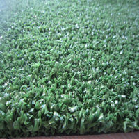 multi-sports synthetic turf like hockey court and tennis field