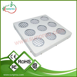 scientific name of fruits shipping rates from china to usa led grow light
