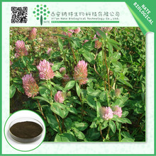 2015 HOT sale red clover extract powder Isoflavones 8% FREE sample High quality