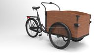 Electric cargobikes 3 wheel
