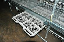 nuevo diseño de jaulas para gallinas para pollos de engorde