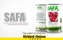 Hybrid Onions Seeds