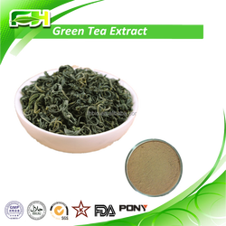 Spot Supply Pure Bio Green Tea Extract , High Quality Pure Bio Green Tea Extract , 100% Natural Green Tea Extract
