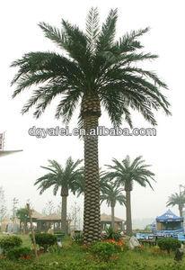 2014 caliente de la venta de todo tipo de árboles de palma de shenzhen, artificial canarias fecha palm tree