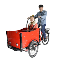 Electric pedal assisted vespa tricycle