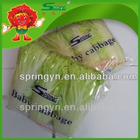 Frozen Chinese Baby cabbage (BIG) healthy green food