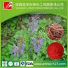 Manufacturer sales radix salviae miltiorrhiza p.e.