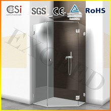 Custom Made 8/10mm Frameless Hinge Shower Enclosure EX-1005