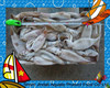 Frozen illex squid whole round white loligo squid seafood from China supplier