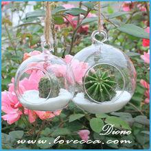 hanging glass terrarium ,round terrarium glass ,wholesale glass terrarium decoration