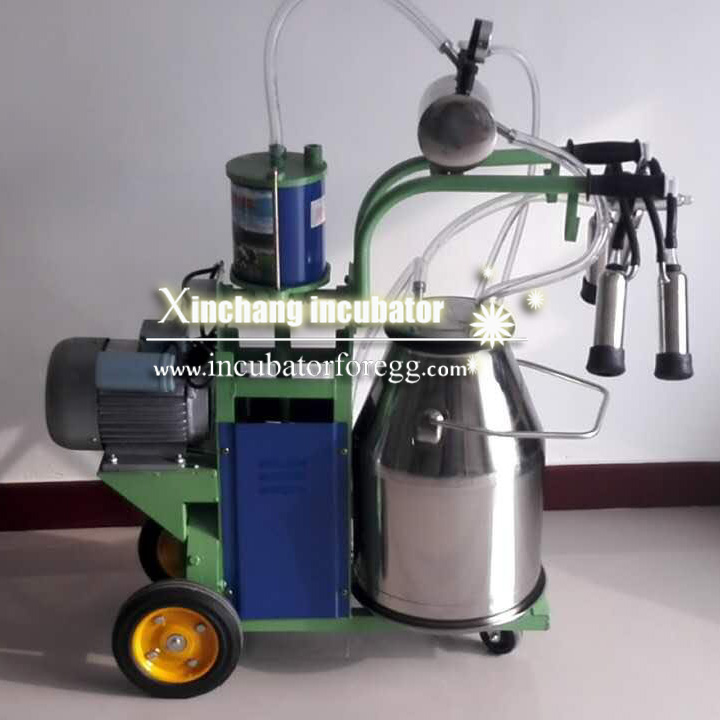 Piston milking machine (1)