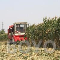Mini combine corn cob harvester machines