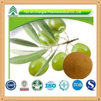 Natrual HPLC 40% 60% Oleuropein Olive Leaf Extract