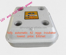 42 eggs suitable mini incubator for goose, duck, quail and so on