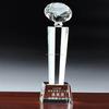 fashion custom diamond crystal trophy for business gift