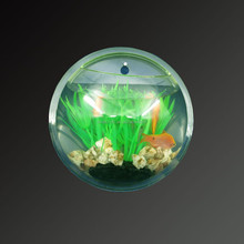 wholesale gold supplier modern design aquarium fish price