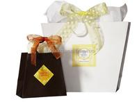 Ribbon Bow Inverted Trapezoid Euro Shopper Paper Gift Bag