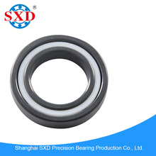 High Performance full ceramic ball bearing 6905CE in Si3N4 from China manufacturer