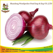 Factory supply New season Fresh Onion 5-7cm red onion with HACCP
