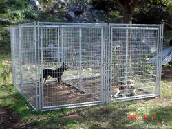 China wholesale metal dog kennel dog kennelcage galvanized steel dog kennel