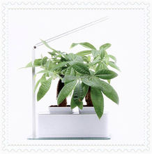 New design solar rechargeable reading lamp