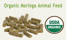 Organic Animal Foods & Feeds