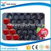 PP Fruit Insert Tray,Black,59*39cm, packaging Apple,Tomato,Pepper