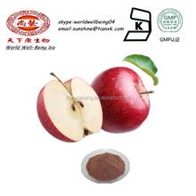 Phloretin Apple Powder cas 60-82-2 /Phloridzin Extract Powder/ phlorogucinol Extract Powder /apple pectin