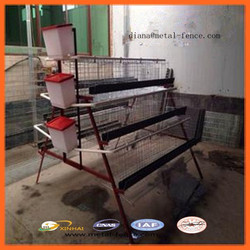 High Quality Chicken Layer Cage/Automatic Chicken Layer Cage for Sale in Philippines/Chicken Cage for Sale