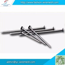 Polished Galvanized common iron nails coils