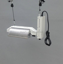 1000w Double Ended Grow Light Kit