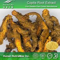 Coptis Chinensis P.E., Coptis Chinensis P.E. 8% Berberine HCL, Natural Coptis Chinensis P.E.